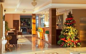 U HILL HOTELU NOVOGODIŠNJA PROSLAVA ZA FIRME, KOLEKTIVE, SINDIKATE…