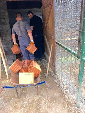 kavez za kengurs