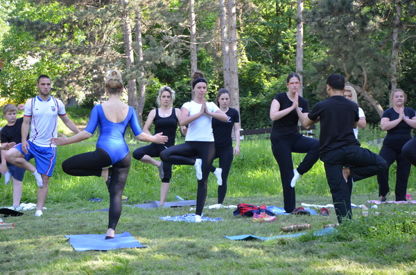 javni cas joge 2