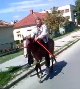 slobodan milosevic zlostavljac konja